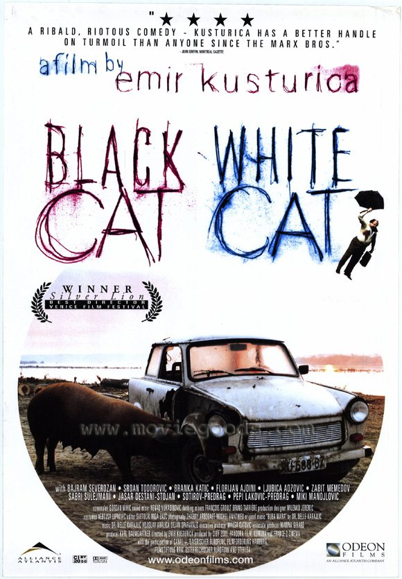 black-cat-white-cat-dvdcover
